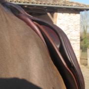 Selle spéciale chevaux à très forte épaule